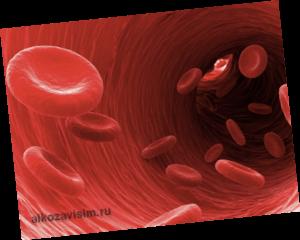 Влияние эритроцита